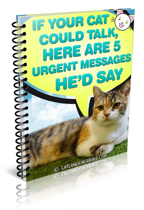 The Cat Language Bible Review